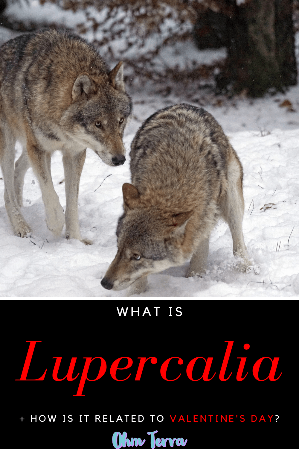 How is Lupercalia linked to Valentine\'s Day?